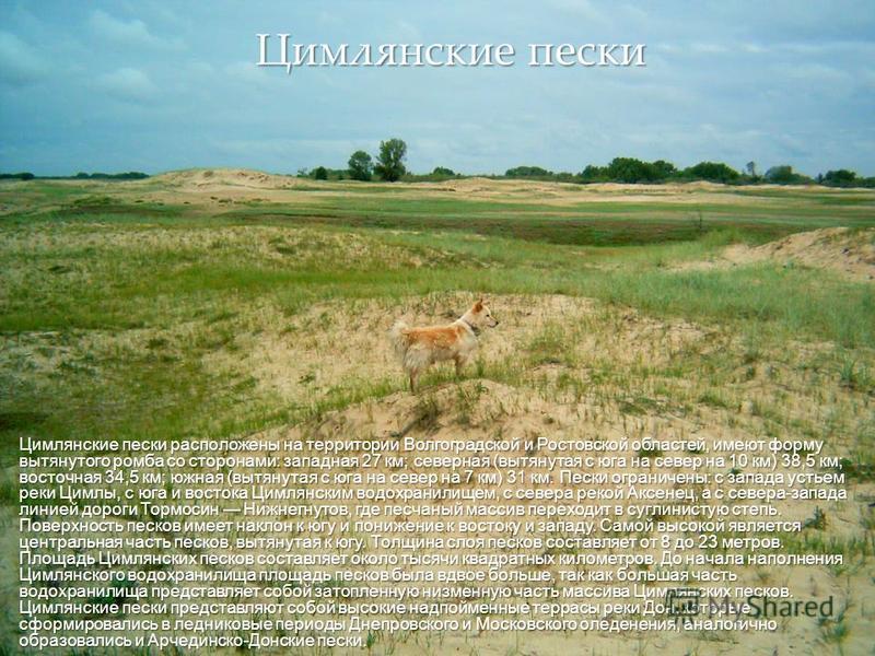 { Цимлянские пески расположены на территории Волгоградской и Ростовской областей, имеют форму вытянутого ромба со сторонами: западная 27 км; северная (вытянутая с юга на север на 10 км) 38,5 км; восточная 34,5 км; южная (вытянутая с юга на север на 7