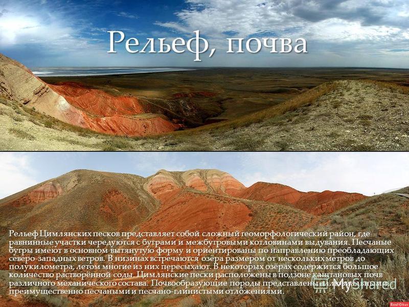 { Рельеф Цимлянских песков представляет собой сложный геоморфологический район, где равнинные участки чередуются с буграми и межбугровыми котловинами выдувания. Песчаные бугры имеют в основном вытянутую форму и ориентированы по направлению преобладаю
