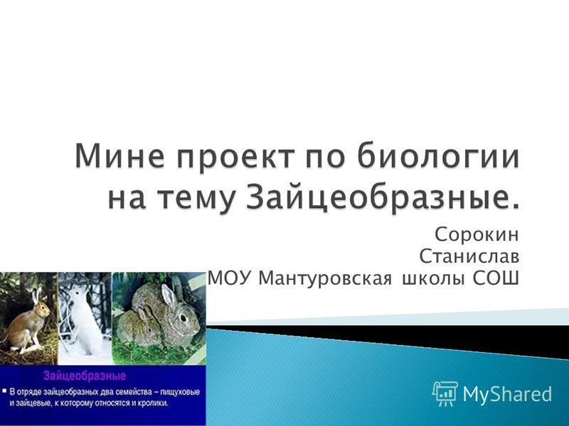 Сорокин Станислав МОУ Мантуровская школы СОШ