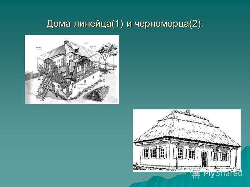 Дома линейка(1) и черноморца(2).