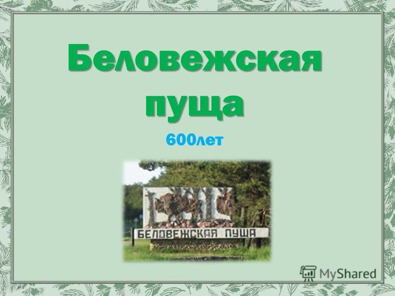 Беловежская пуща 600 лет