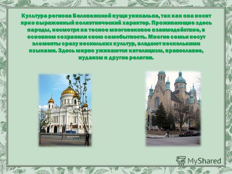 Культура региона Беловежской пущи уникальна, так как она носит ярко выраженный полиэтнический характер. Проживающие здесь народы, несмотря на тесное многовековое взаимодействие, в основном сохранили свою самобытность. Многие семьи несут элементы сраз
