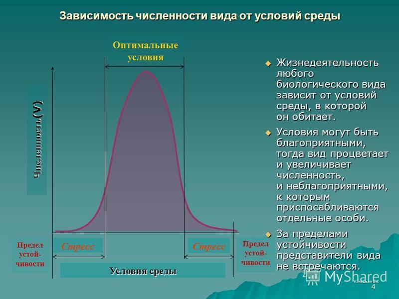 Коняшкин В.А. 4 Зависимость численнасти вида от условий среды Жизнедеятельность любого биологического вида зависит от условий среды, в которой он обитает. Жизнедеятельность любого биологического вида зависит от условий среды, в которой он обитает. Ус