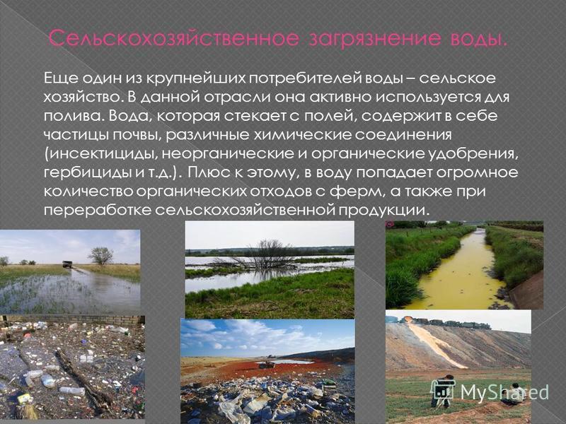 Сельскохозяйственное загрязнение воды. Еще один из крупнейших потребителей воды – сельское хозяйство. В данной отрасли она активно используется для полива. Вода, которая стекает с полей, содержит в себе частицы почвы, различные химические соединения