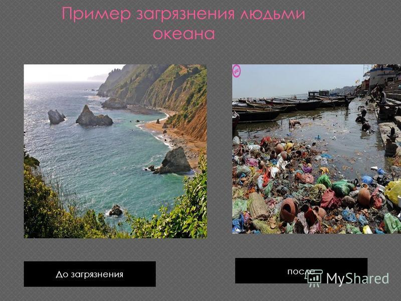 До загрязнения после