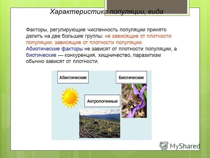 Факторы, регулирующие численность популяции принято делить на две большие группы: не зависящие от плотности популяции; зависящие от плотности популяции. Абиотические факторы не зависят от плотности популяции, а биотические конкуренция, хищничество, п