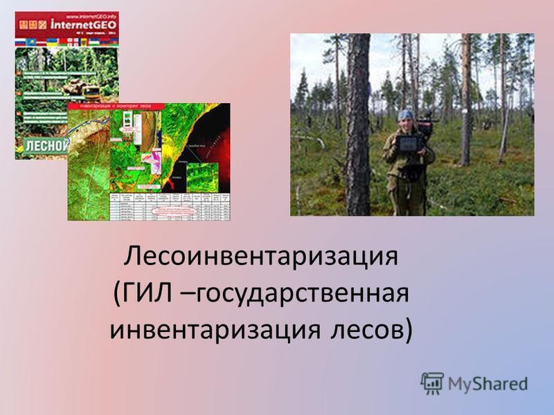 Лесоинвентаризация (ГИЛ –государственная инвентаризация лесов)