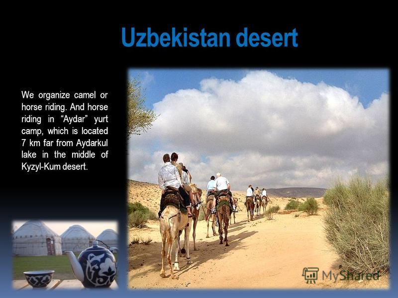 Uzbekistan desert We organize camel or horse riding. And horse riding in Aydar yurt camp, which is located 7 km far from Aydarkul lake in the middle of Kyzyl-Kum desert.