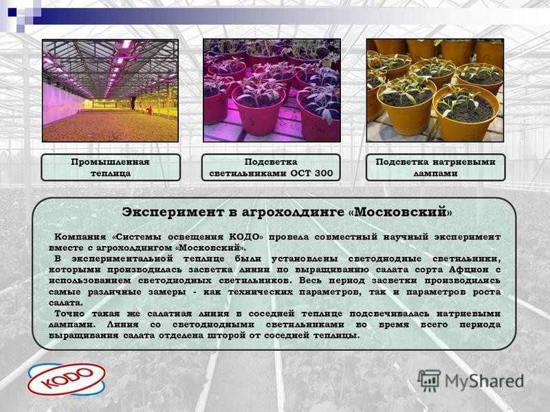 Промышленная теплица Подсветка светильниками ОСТ 300 Подсветка натриевыми лампами Эксперимент в агрохолдинге «Московский» Компания «Системы освещения КОДО» провела совместный научный эксперимент вместе с агрохолдингом «Московский». В экспериментально