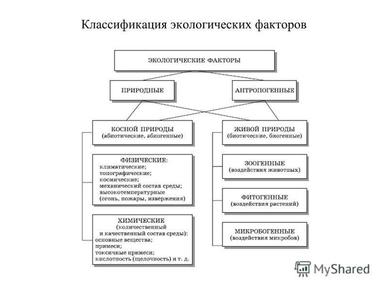 Классификация экологических факторов