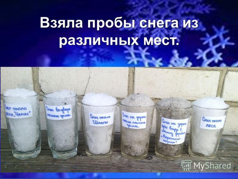 FokinaLida.75@mail.ru Взяла пробы снега из различных мест.