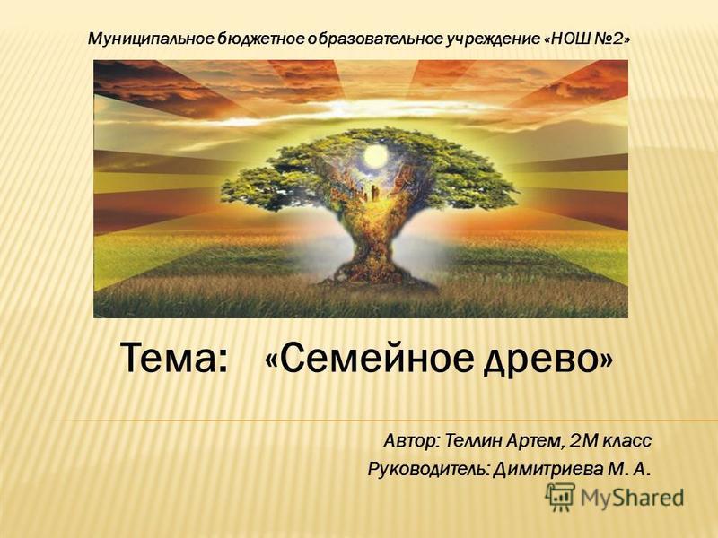 Автор: Теллин Артем, 2М класс Руководитель: Димитриева М. А. Муниципальное бюджетное образовательное учреждение «НОШ 2» Тема:«Семейное древо»