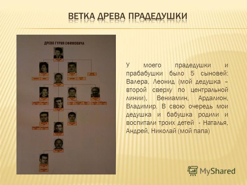 У моего прадедушки и прабабушки было 5 сыновей: Валера, Леонид (мой дедушка – второй сверху по центральной линии), Вениамин, Ардалион, Владимир. В свою очередь мои дедушка и бабушка родили и воспитали троих детей - Наталья, Андрей, Николай (мой папа)