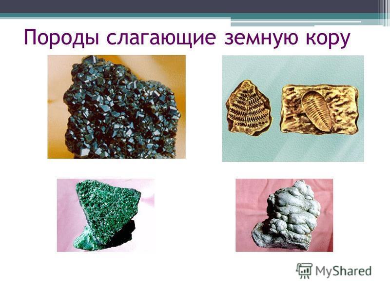 Породы слагающие земную кору Земная кора сложена самыми разнообразными минералами и горными. В этих пластах можно встретить залежи полезных ископаемых каменного угля, нефти, каменной соли. Все эти полезные ископаемые органического происхождения. Гран