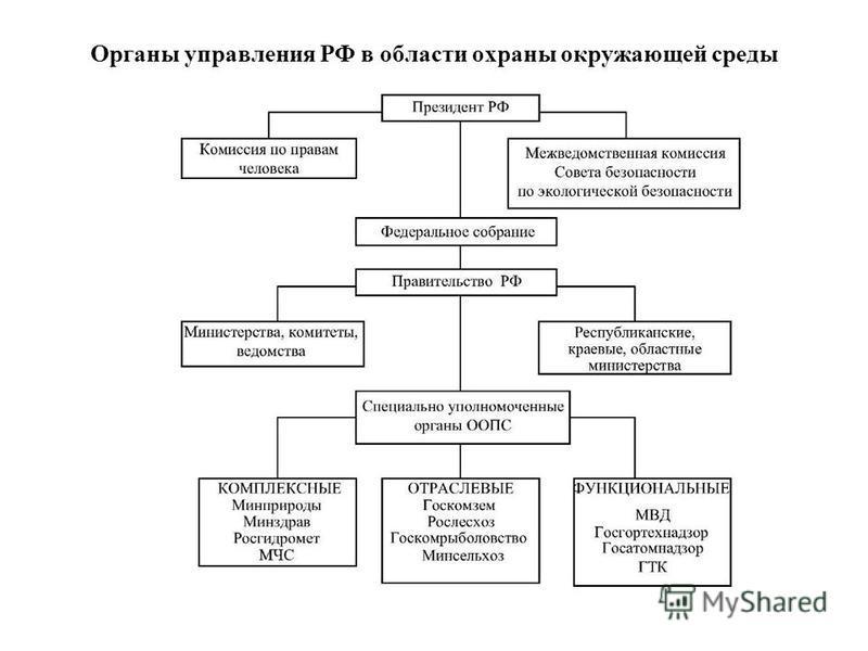 Органы управления РФ в области охраны окружающей среды