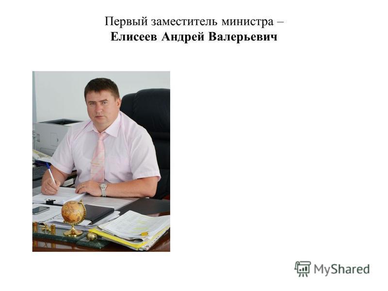 Первый заместитель министра – Елисеев Андрей Валерьевич
