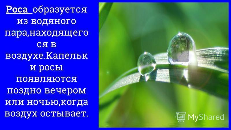 Роса образуется из водяного пара,находящего ся в воздухе.Капельк и росы появляются поздно вечером или ночью,когда воздух остывает.