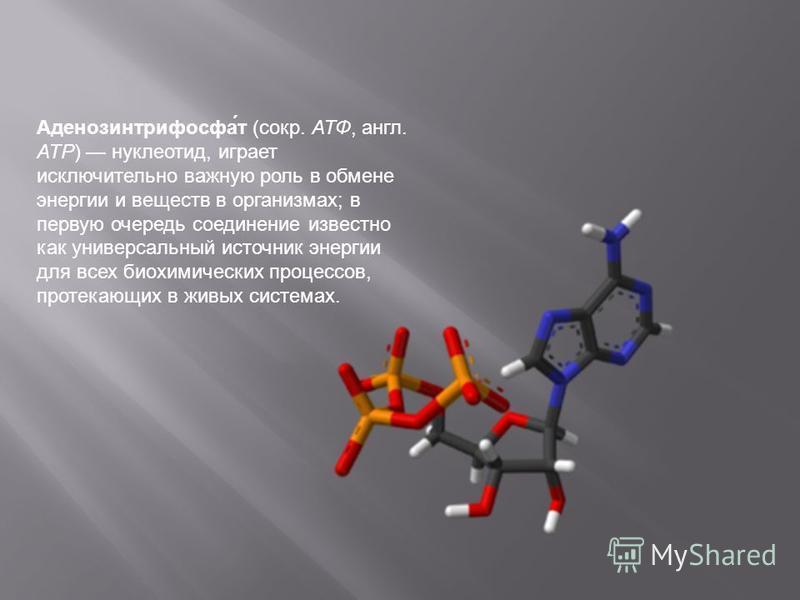 Аденозинтрифосфа́т (сокр. АТФ, англ. АТР) нуклеотид, играет исключительно важную роль в обмене энергии и веществ в организмах; в первую очередь соединение известно как универсальный источник энергии для всех биохимических процессов, протекающих в жив