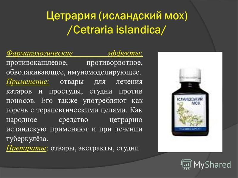 Цетрария (исландский мох) /Cetraria islandica/ Фармакологические эффекты: противокашлевое, противорвотное, обволакивающее, иммуномодулирующее. Применение: отвары для лечения катаров и простуды, студни против поносов. Его также употребляют как горечь