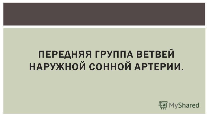 ПЕРЕДНЯЯ ГРУППА ВЕТВЕЙ НАРУЖНОЙ СОННОЙ АРТЕРИИ.