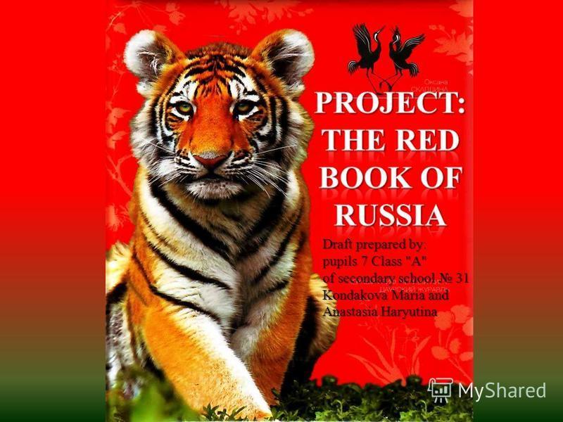 Draft prepared by: pupils 7 Class A of secondary school 31 Kondakova Maria and Anastasia Haryutinа