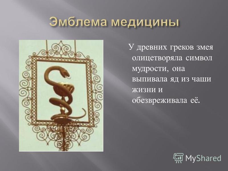 У древних греков змея олицетворяла символ мудрости, она выпивала яд из чаши жизни и обезвреживала её.