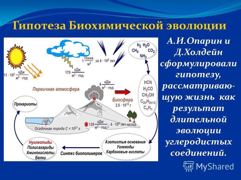 Гипотеза Биохимической эволюции А.И.Опарин и Д.Холдейн сформулировали гипотезу, рассматриваю- шую жизнь как результат длительной эволюции углеродистых соединений.