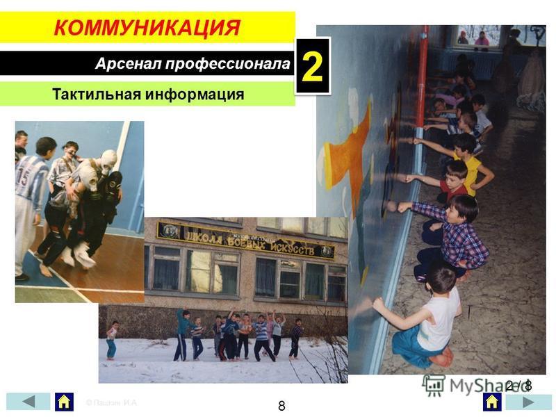 КОММУНИКАЦИЯ Арсенал профессионала Тактильная информация 2 / 8 © Пашкин И.А. 8 22