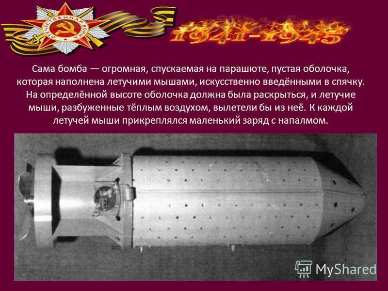 Сама бомба огромная, спускаемая на парашюте, пустая оболочка, которая наполнена летучими мышами, искусственно введёнными в спячку. На определённой высоте оболочка должна была раскрыться, и летучие мыши, разбуженные тёплым воздухом, вылетели бы из неё
