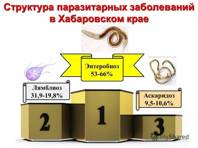 Структура паразитарных заболеваний в Хабаровском крае Энтеробиоз 53-66% Лямблиоз 31,9-19,8% Аскаридоз 9,5-10,6%