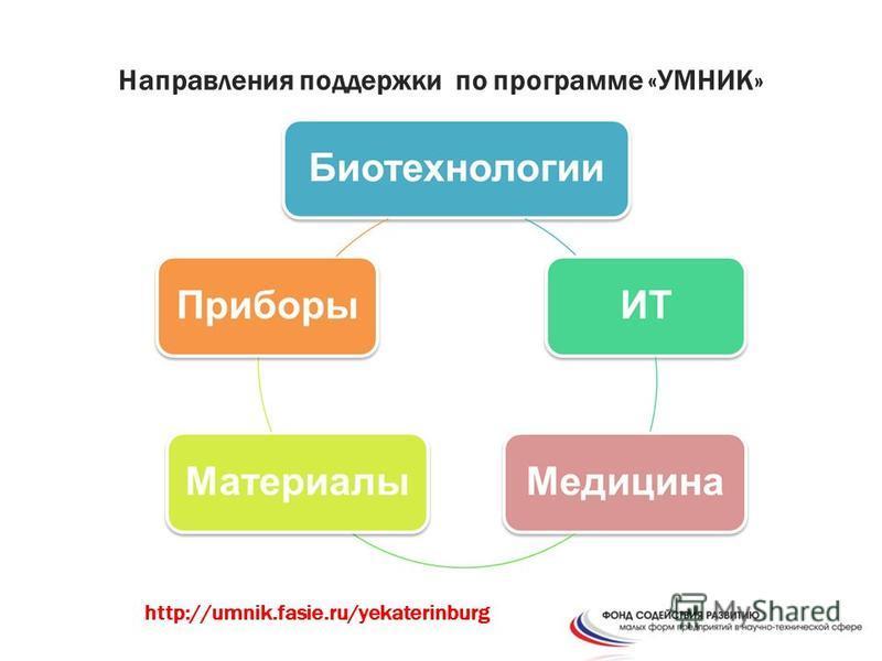 Направления поддержки по программе «УМНИК» http://umnik.fasie.ru/yekaterinburg
