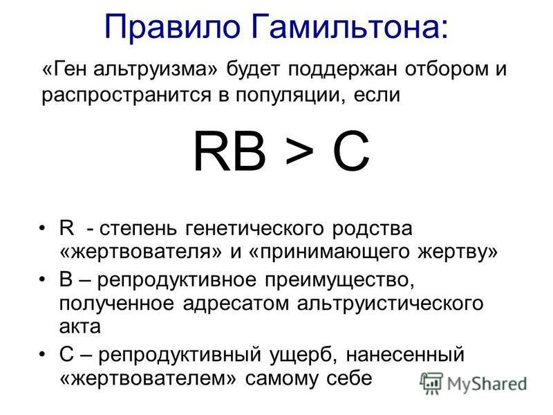 Правило Гамильтона: RB > C R - степень генетического родства «жертвователя» и «принимающего жертву» B – репродуктивное преимущество, полученное адресатом альтруистического акта C – репродуктивный ущерб, нанесенный «жертвователем» самому себе «Ген аль