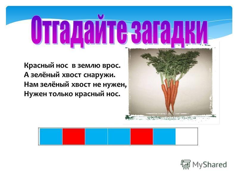Красный нос в землю врос. А зелёный хвост снаружи. Нам зелёный хвост не нужен, Нужен только красный нос.