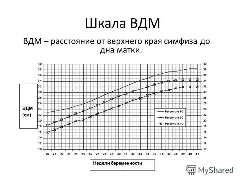 Шкала ВДМ ВДМ – расстояние от верхнего края симфиза до дна матки.