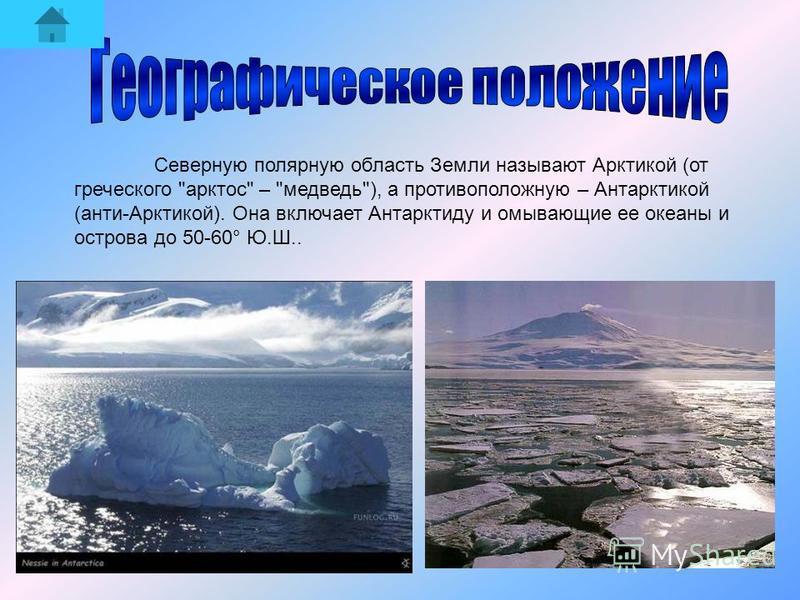 Северную полярную область Земли называют Арктикой (от греческого арктос – медведь), а противоположную – Антарктикой (анти-Арктикой). Она включает Антарктиду и омывающие ее океаны и острова до 50-60° Ю.Ш..
