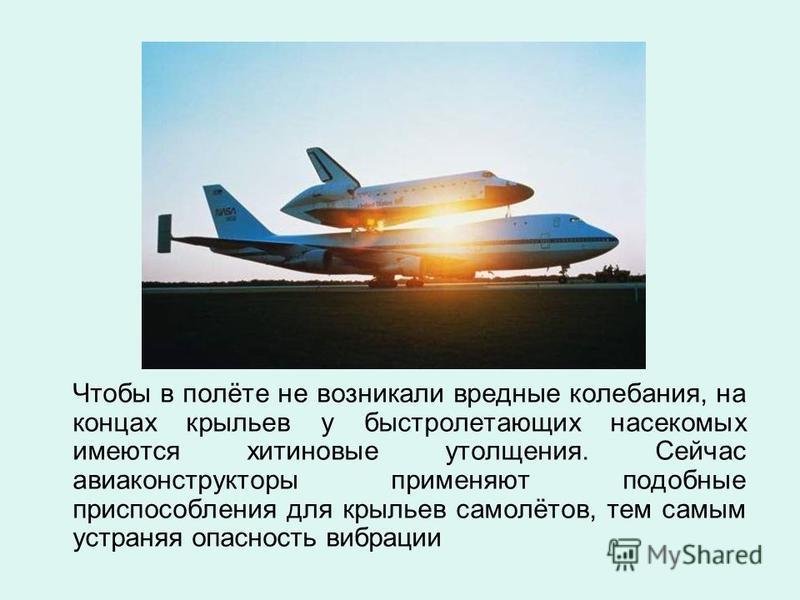 Чтобы в полёте не возникали вредные колебания, на концах крыльев у быстролетающих насекомых имеются хитиновые утолщения. Сейчас авиаконструкторы применяют подобные приспособления для крыльев самолётов, тем самым устраняя опасность вибрации