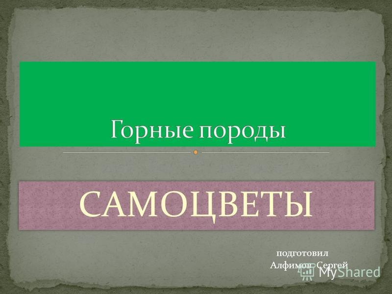 САМОЦВЕТЫ Алфимов Сергей подготовил