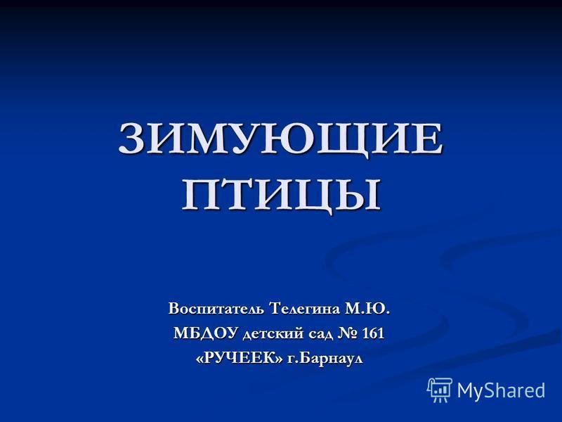 ЗИМУЮЩИЕ ПТИЦЫ Воспитатель Телегина М.Ю. МБДОУ детский сад 161 «РУЧЕЕК» г.Барнаул