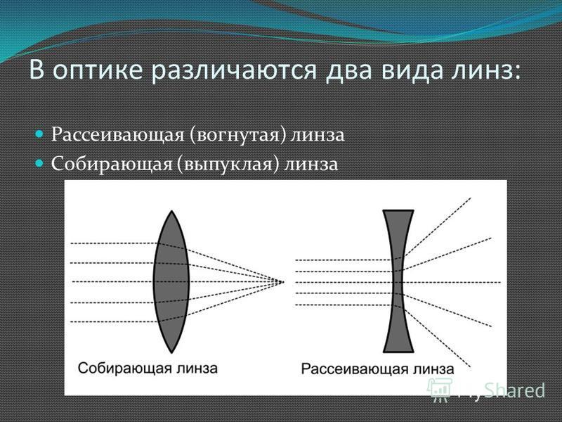 В оптике различаются два вида линз: Рассеивающая (вогнутая) линза Собирающая (выпуклая) линза