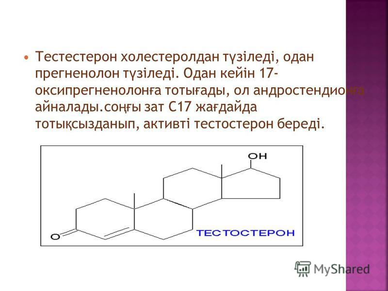 Тестестерон холестерол дан ү зіледі, одна прегненолон т ү зіледі. Одан кейін 17- оксипрегненолон ғ а тоты ғ аты, ол андростендион ғ а айналаты.со ңғ ы зат С17 жа ғ да-да тоты қ сызданнып, активті тестостерон береді.