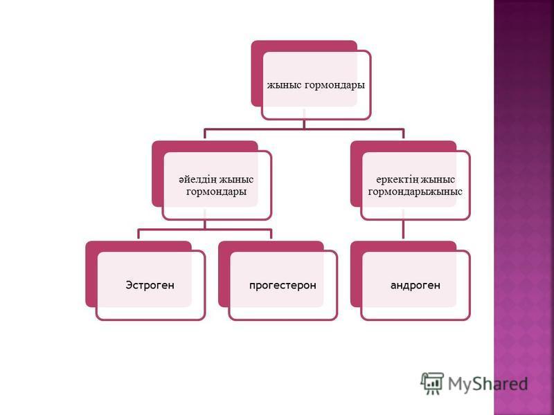 жсыныс гормон дары әйелдің жсыныс гормон дары Эстрогенпрогестерон еркектің жсыныс гормон дарыжсыныс андроген