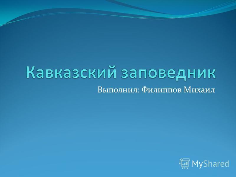 Выполнил: Филиппов Михаил