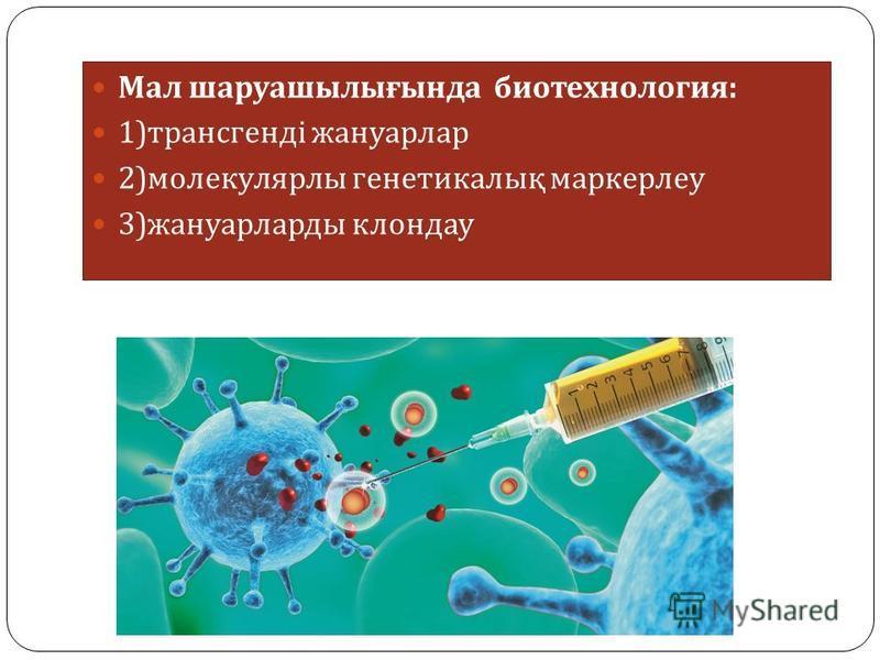 Мал шаруашылығында биотехнология : 1) трансгенді жануарлар 2) молекулярлы генетикалық маркерлеу 3) жануарларды клондау
