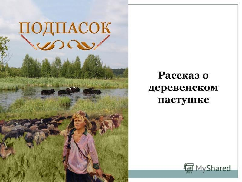 Рассказ о деревенском пастушке