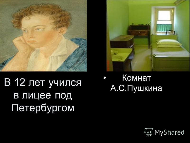 В 12 лет учился в лицее под Петербургом Комнат А.С.Пушкина