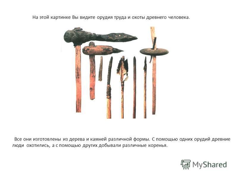 На этой картинке Вы видите орудия труда и охоты древнего человека. Все они изготовлены из дерева и камней различной формы. С помощью одних орудий древние люди охотились, а с помощью других добывали различные коренья.