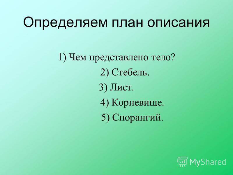 Определяем план описания 1) Чем представлено тело? 2) Стебель. 3) Лист. 4) Корневище. 5) Спорангий.