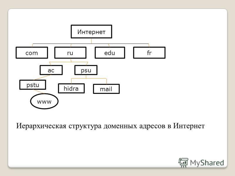 Интернет comruedufr acpsu pstu hidra mail www Иерархическая структура доменных адресов в Интернет