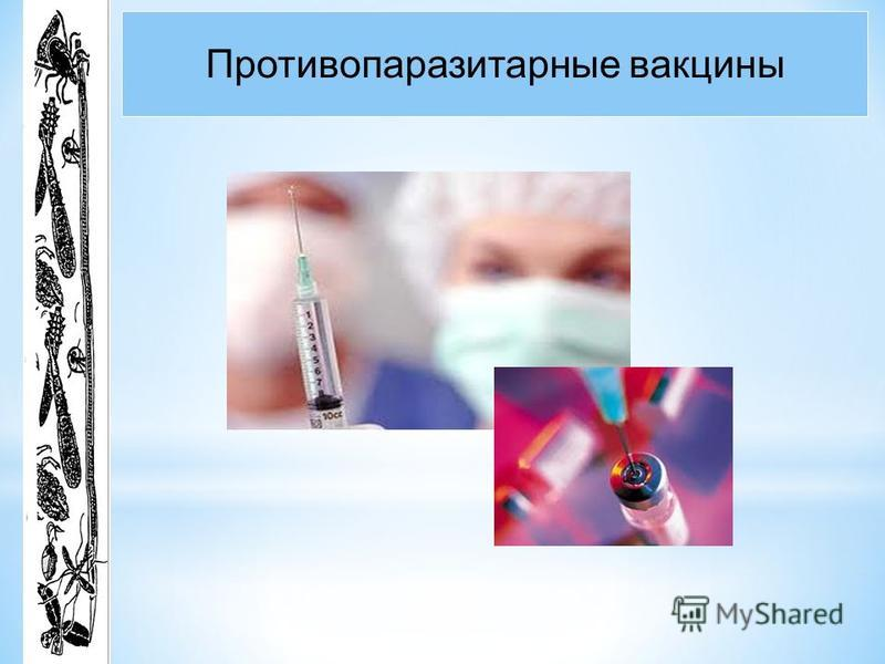 Противопаразитарные вакцины