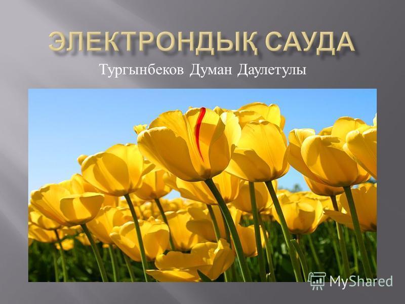 Тургынбеков Думан Даулетулы
